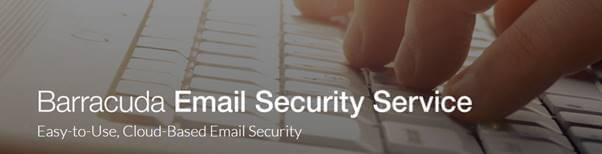 email security bury st Edmunds By Bluesys